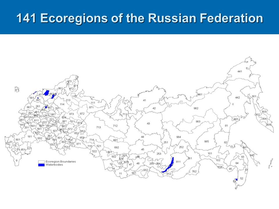 141 Ecoregions of the Russian Federation