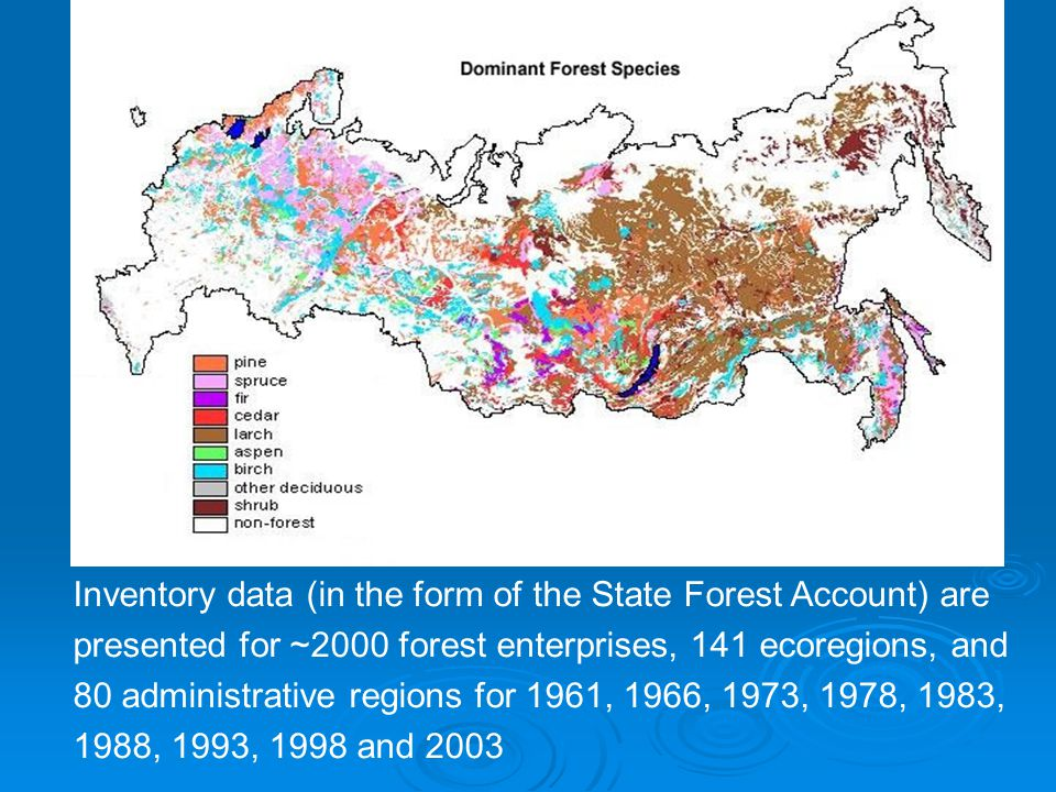 Inventory data (in the form of the State Forest Account) are presented for ~2000 forest enterprises, 141 ecoregions, and 80 administrative regions for 1961, 1966, 1973, 1978, 1983, 1988, 1993, 1998 and 2003