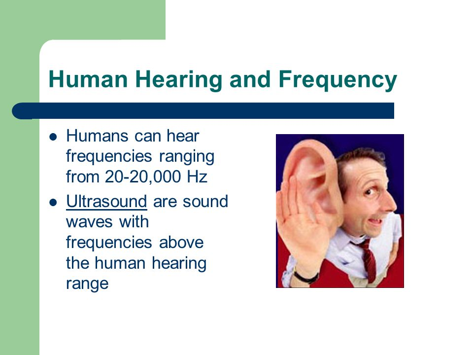Human Hearing and Frequency Humans can hear frequencies ranging from 20-20,000 Hz Ultrasound are sound waves with frequencies above the human hearing range