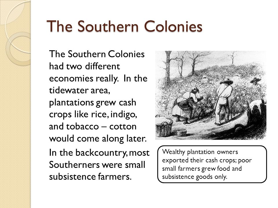 The Southern Colonies The Southern Colonies had two different economies really.