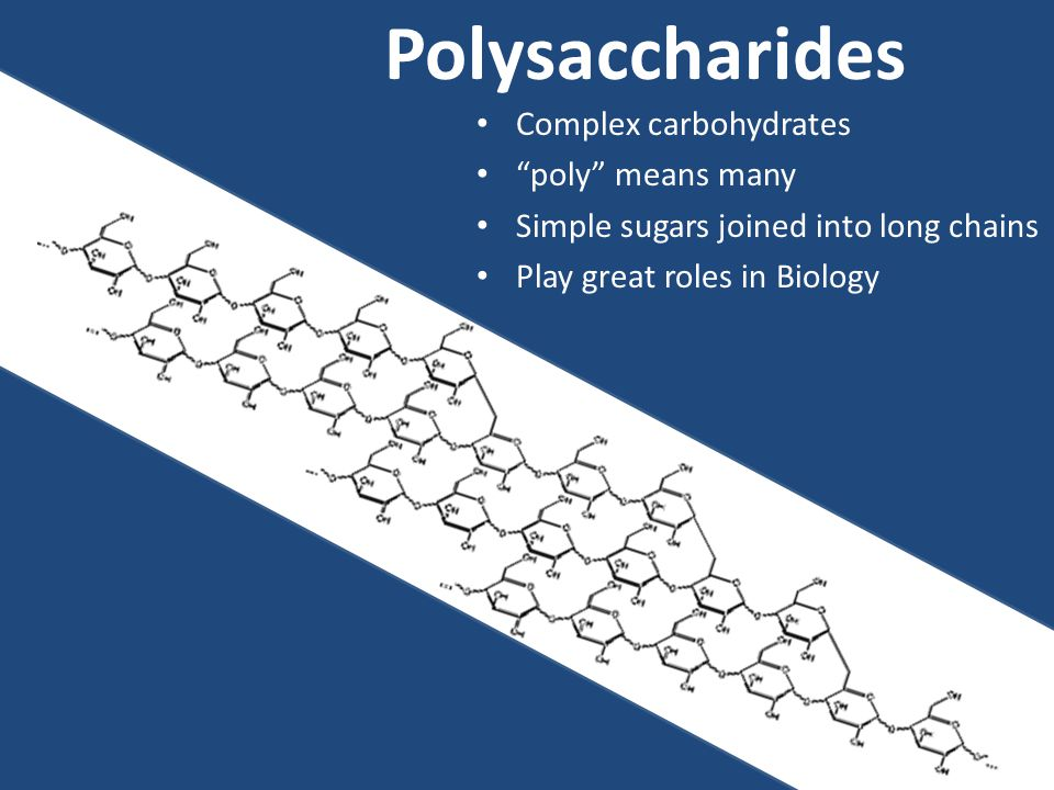 Polysaccharides Complex carbohydrates poly means many Simple sugars joined into long chains Play great roles in Biology