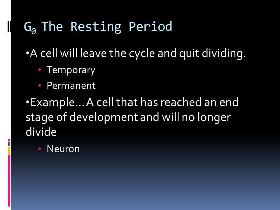 G 0 The Resting Period A cell will leave the cycle and quit dividing.