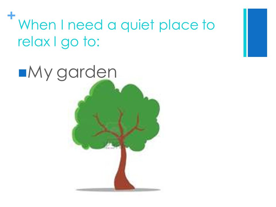 + When I need a quiet place to relax I go to: My garden