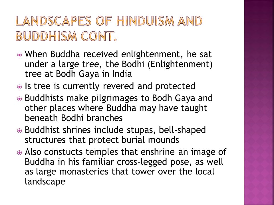  When Buddha received enlightenment, he sat under a large tree, the Bodhi (Enlightenment) tree at Bodh Gaya in India  Is tree is currently revered a