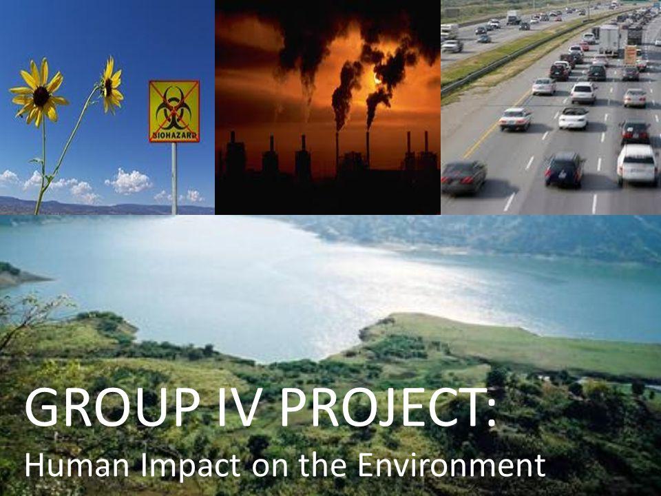 enviornment project