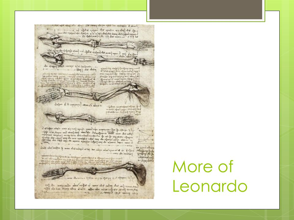 More of Leonardo