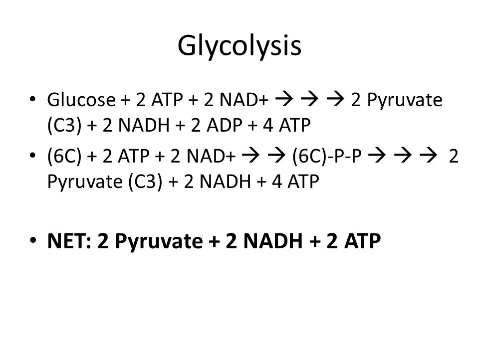Glycolysis Glucose + 2 ATP + 2 NAD+    2 Pyruvate (C3) + 2 NADH + 2 ADP + 4 ATP (6C) + 2 ATP + 2 NAD+   (6C)-P-P    2 Pyruvate (C3) + 2 NADH + 4 ATP NET: 2 Pyruvate + 2 NADH + 2 ATP