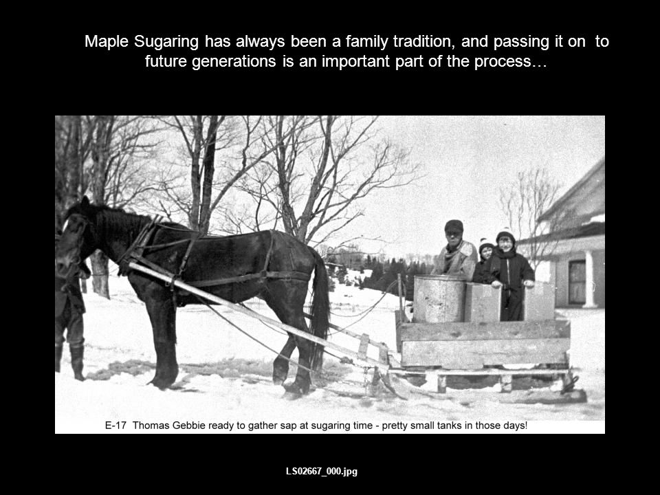 Terms and Conditions Maple Sugaring has always been a family tradition, and passing it on to future generations is an important part of the process… LS02667_000.jpg