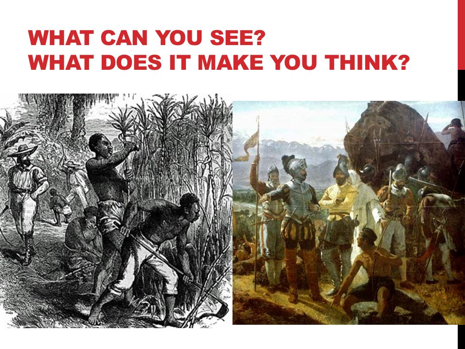 WHAT CAN YOU SEE? WHAT DOES IT MAKE YOU THINK?