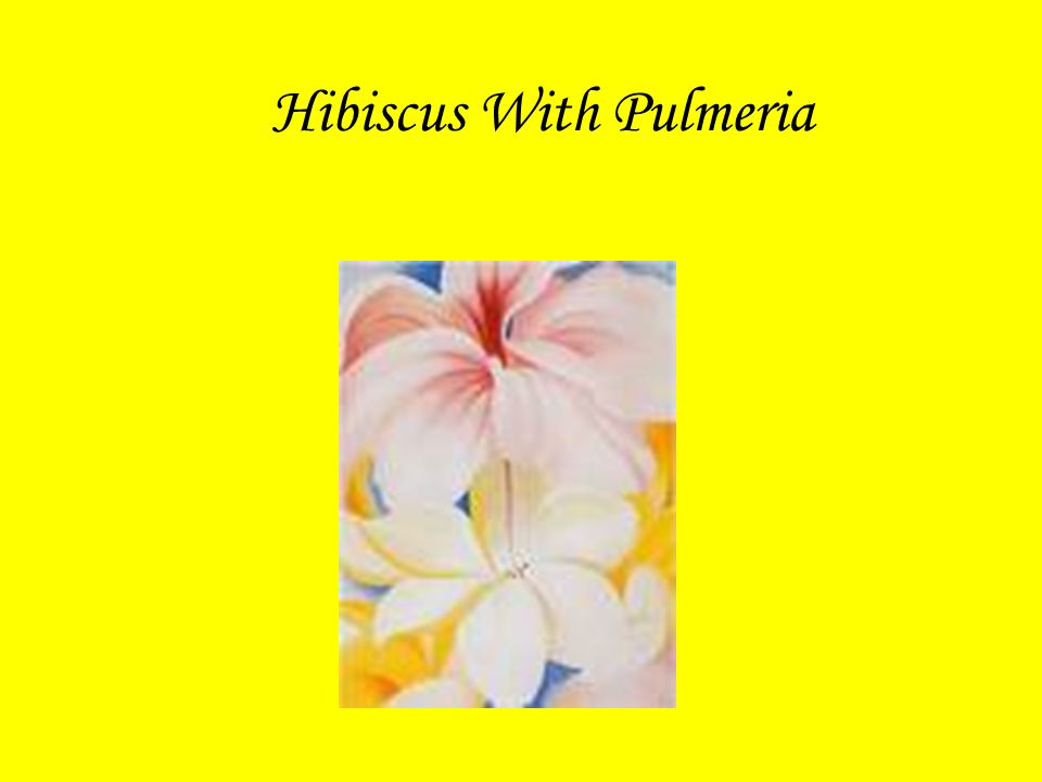 Hibiscus With Pulmeria