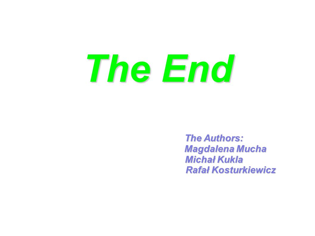 The End The Authors: Magdalena Mucha Michał Kukla Rafał Kosturkiewicz Rafał Kosturkiewicz