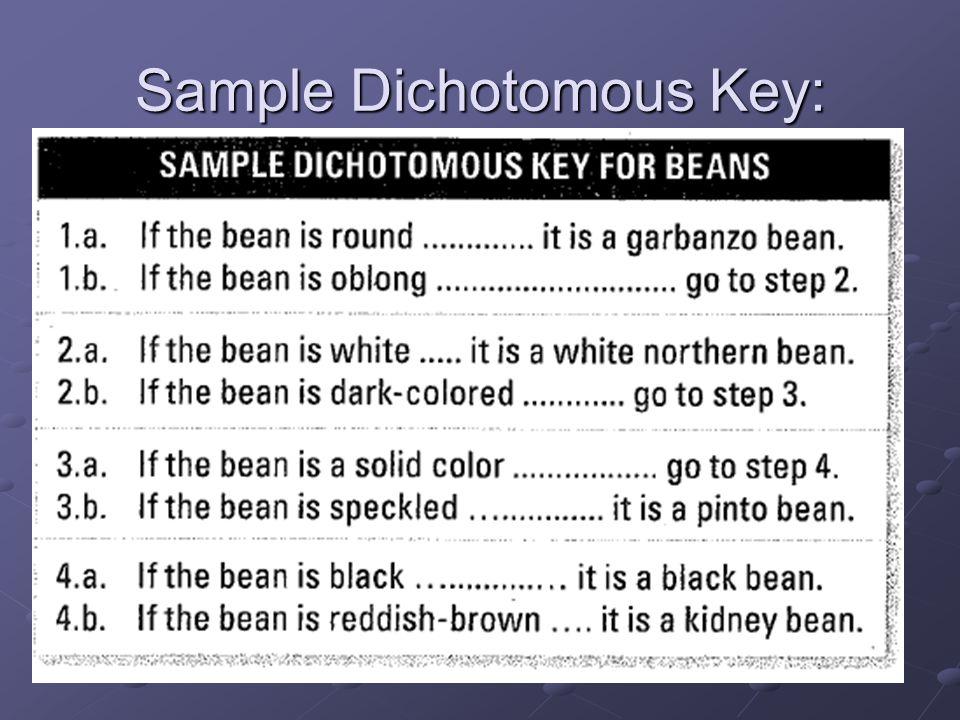 Sample Dichotomous Key:
