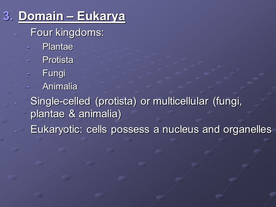 3.Domain – Eukarya - Four kingdoms: -Plantae -Protista -Fungi -Animalia - Single-celled (protista) or multicellular (fungi, plantae & animalia) - Eukaryotic: cells possess a nucleus and organelles