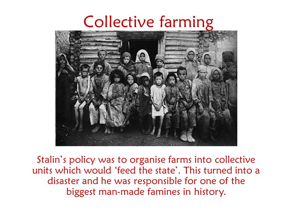 Collective farming Stalin's policy was to organise farms into collective units which would 'feed the state'. This turned into a disaster and he was re