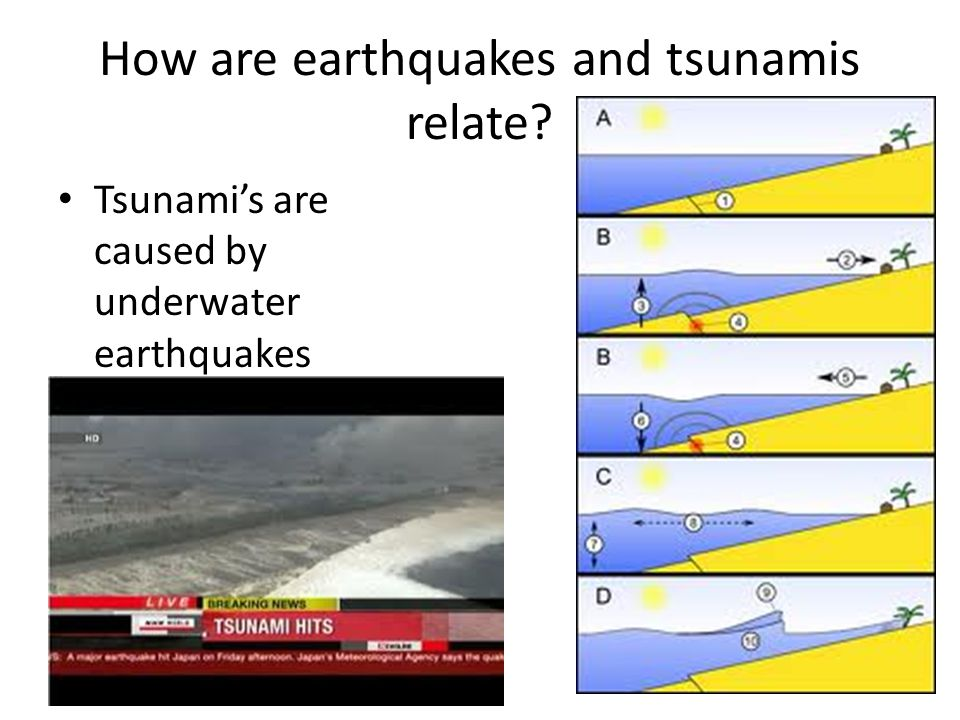 How are earthquakes and tsunamis relate Tsunami's are caused by underwater earthquakes