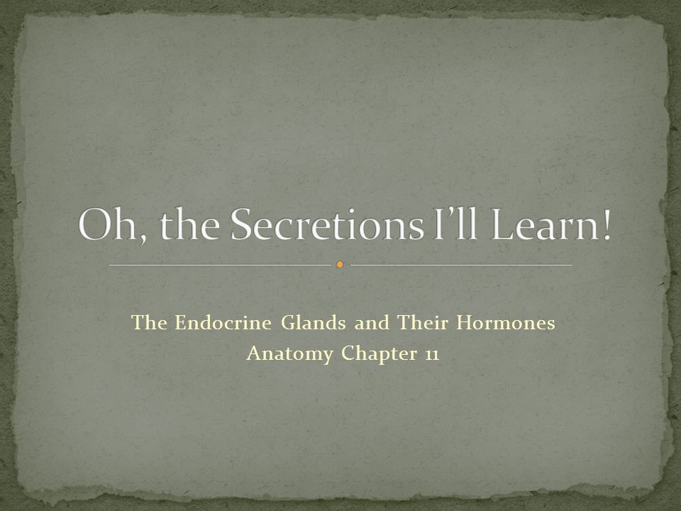 The Endocrine Glands and Their Hormones Anatomy Chapter 11