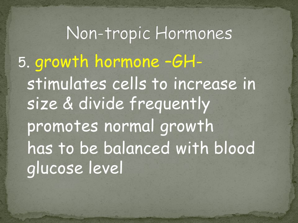 5. growth hormone –GH- stimulates cells to increase in size & divide frequently promotes normal growth has to be balanced with blood glucose level