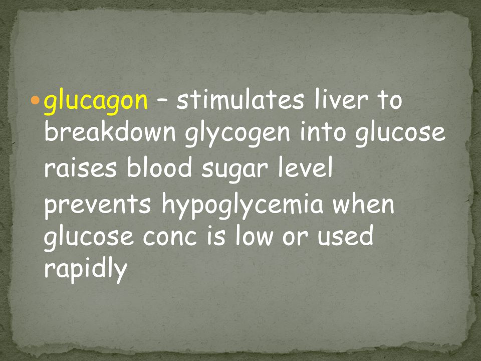 glucagon – stimulates liver to breakdown glycogen into glucose raises blood sugar level prevents hypoglycemia when glucose conc is low or used rapidly