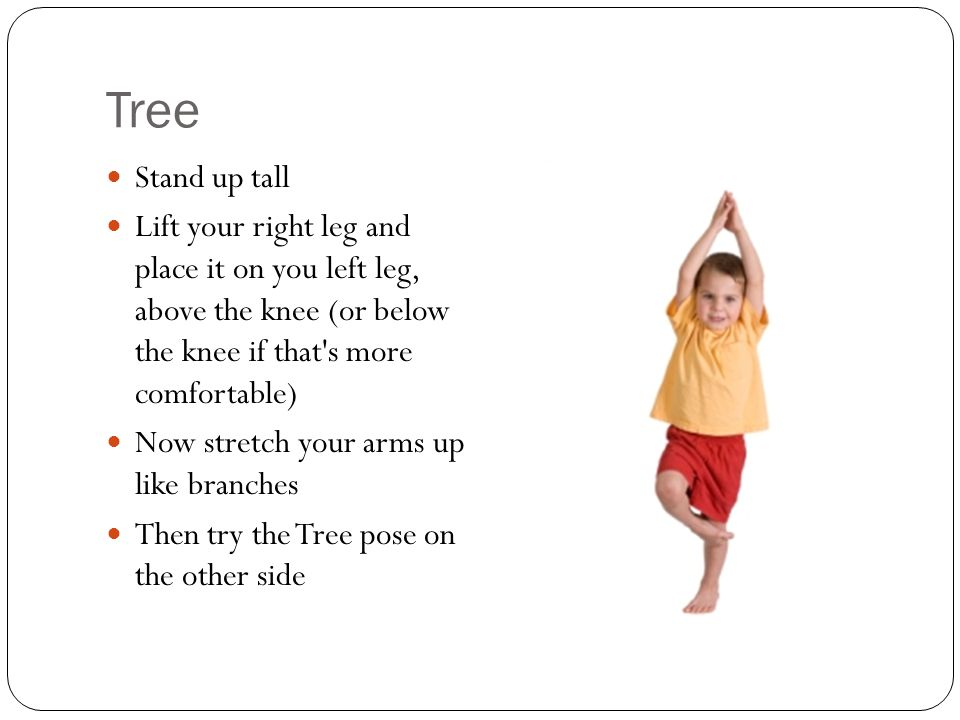 Tree Stand up tall Lift your right leg and place it on you left leg, above the knee (or below the knee if that s more comfortable) Now stretch your arms up like branches Then try the Tree pose on the other side