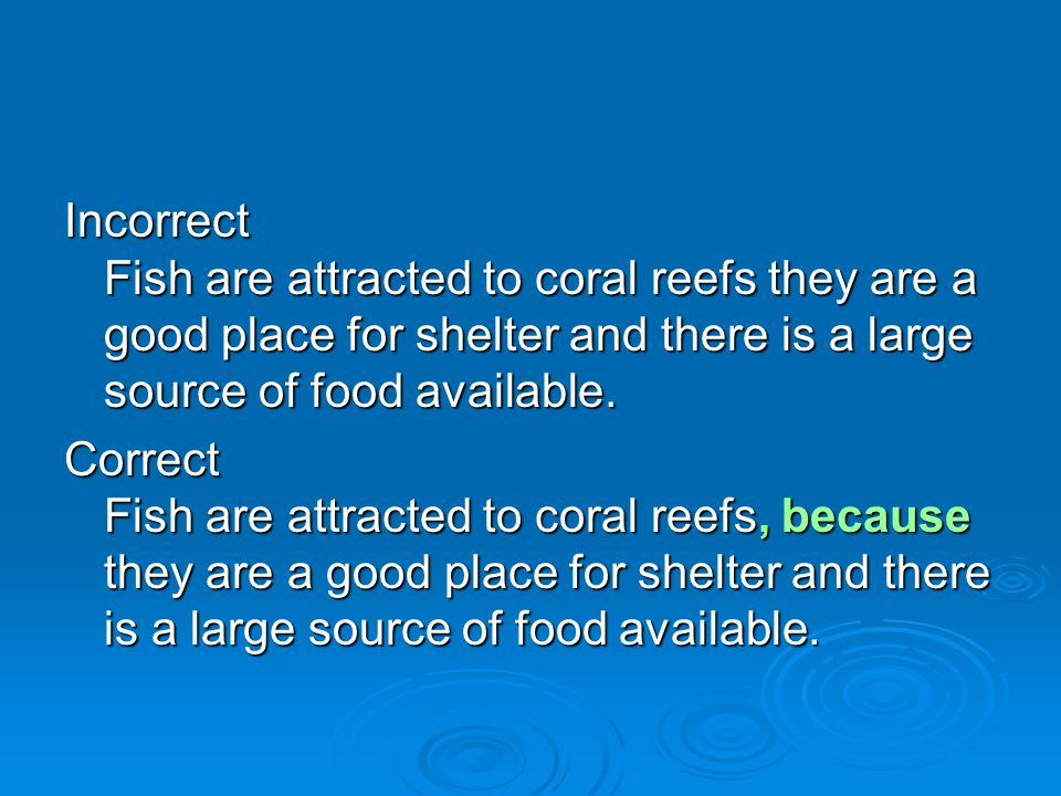 Incorrect Fish are attracted to coral reefs they are a good place for shelter and there is a large source of food available.