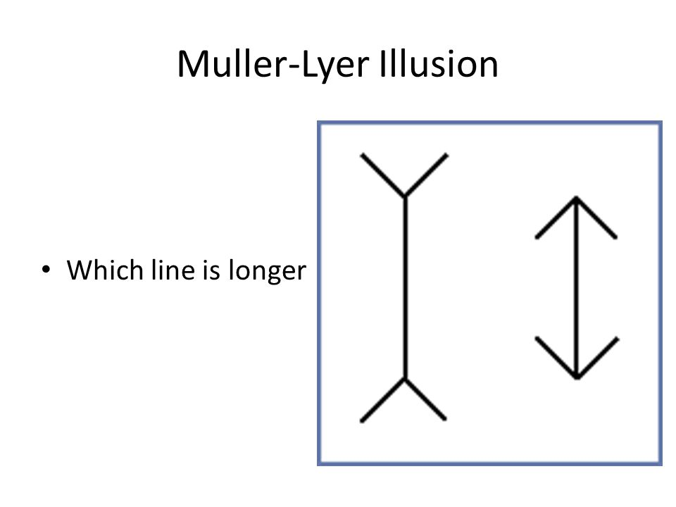 Muller-Lyer Illusion Both lines are of equal length.