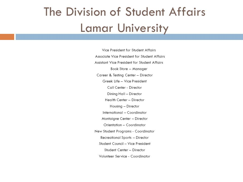 The Division of Student Affairs Lamar University Vice President for Student Affairs Associate Vice President for Student Affairs Assistant Vice Presid