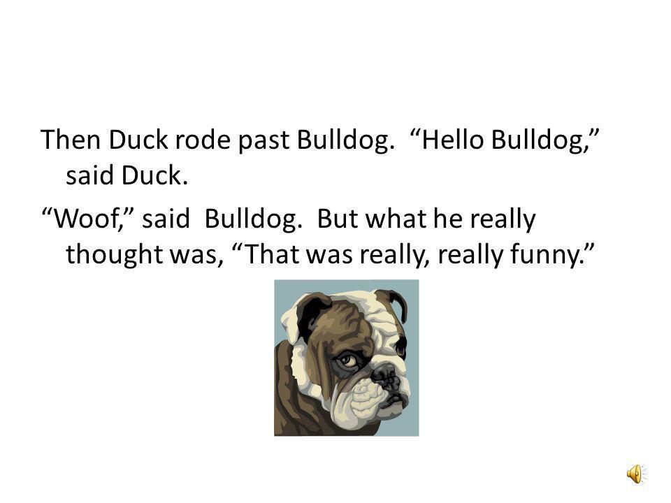Then Duck rode past Aunt Duck. Hello Aunt Duck, said Duck.