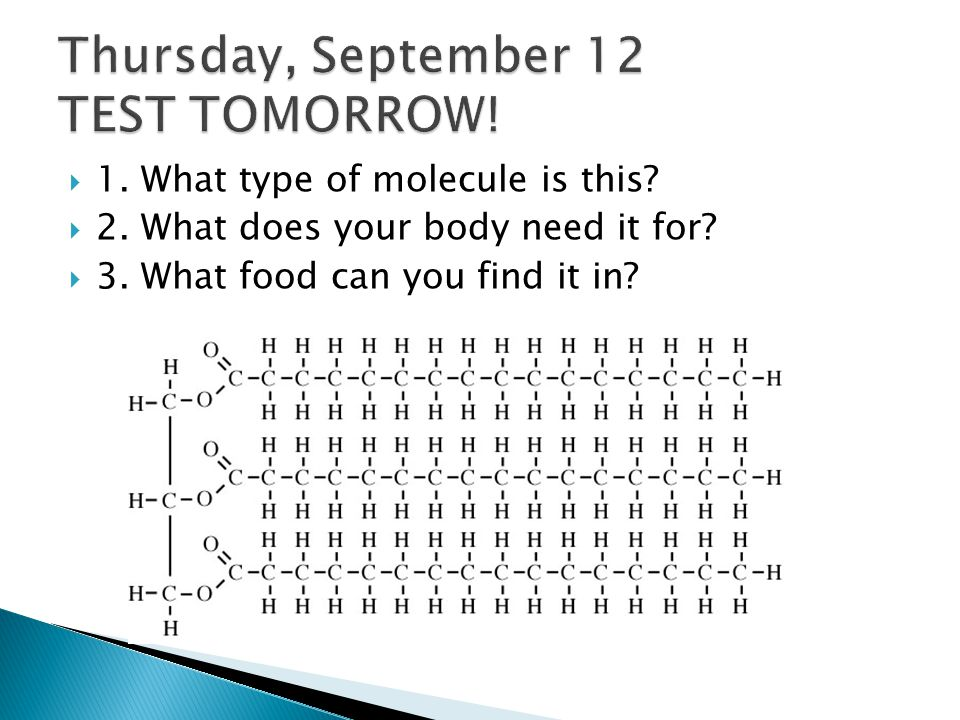  1.What type of molecule is this.  2. What does your body need it for.
