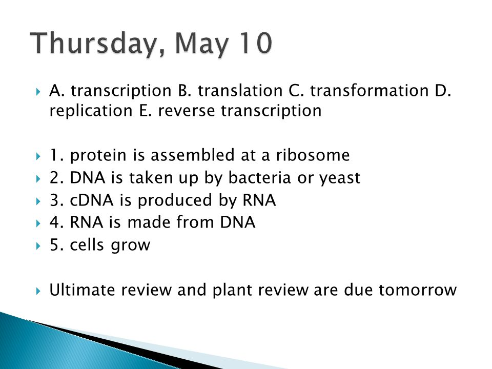  A. transcription B. translation C. transformation D. replication E. reverse transcription  1. protein is assembled at a ribosome  2. DNA is taken