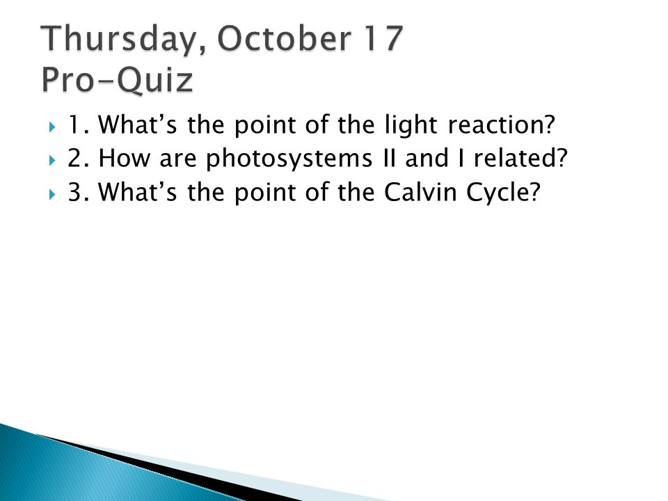  1.What's the point of the light reaction.  2. How are photosystems II and I related.