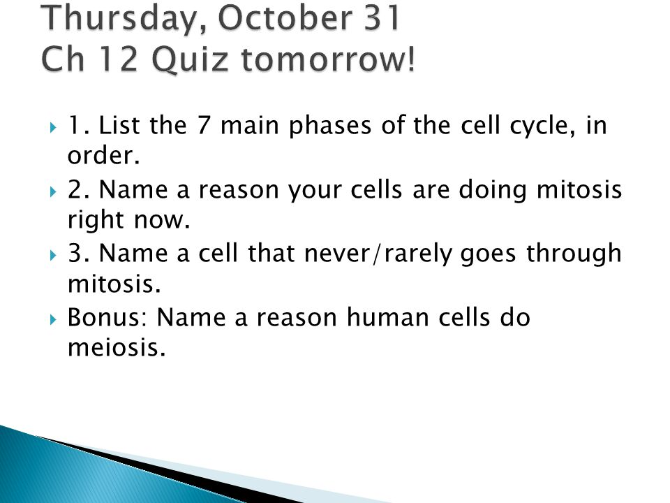 1.List the 7 main phases of the cell cycle, in order.