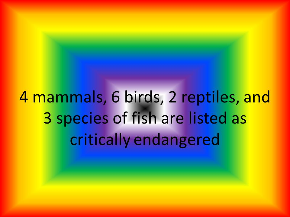 4 mammals, 6 birds, 2 reptiles, and 3 species of fish are listed as critically endangered