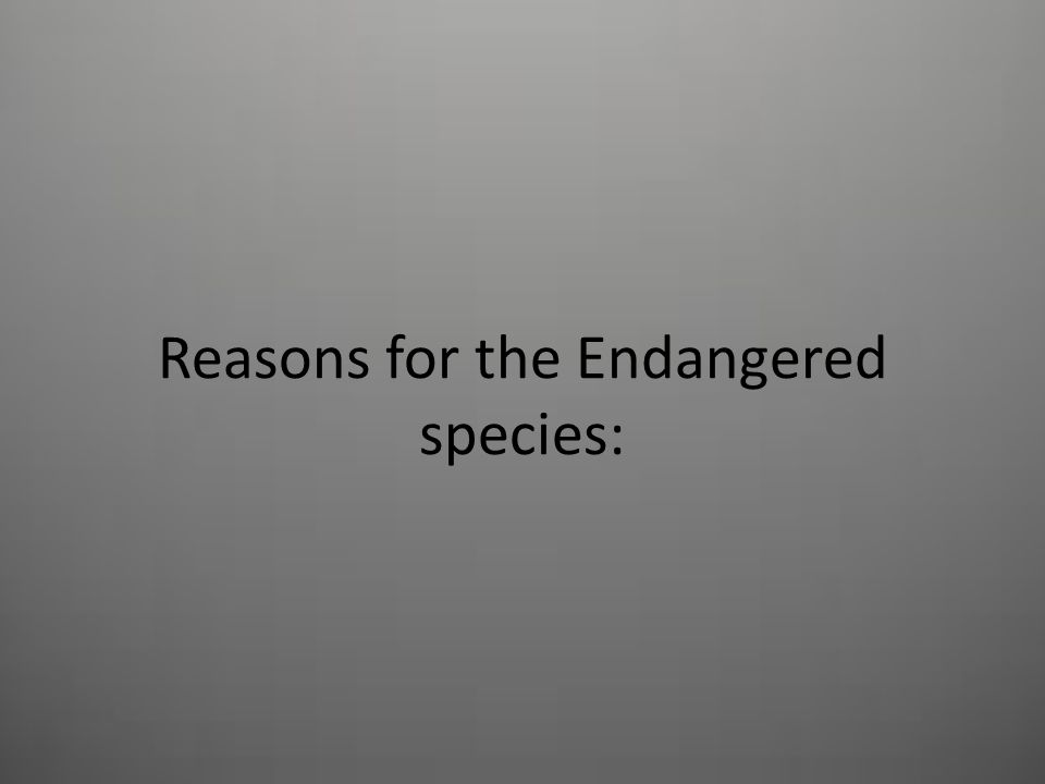 Reasons for the Endangered species: