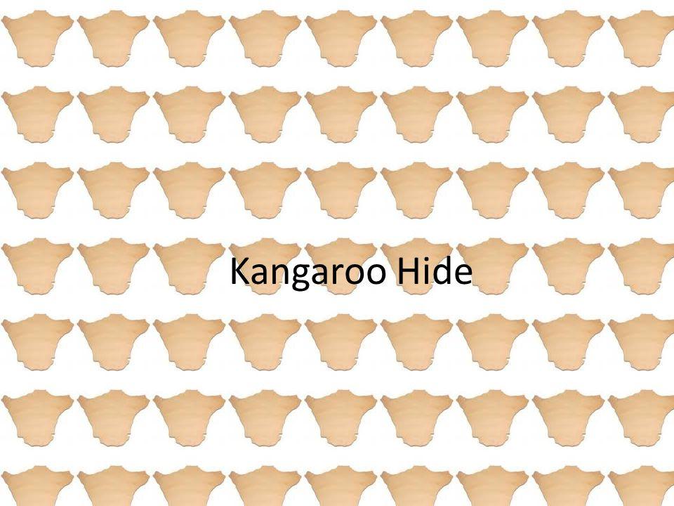 Kangaroo Hide