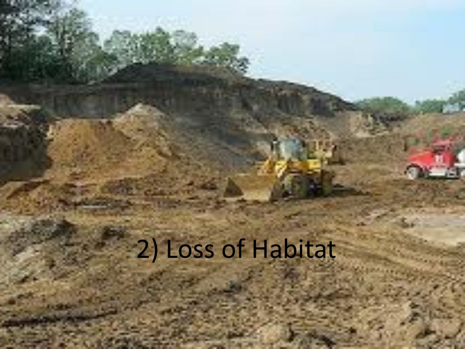 2) Loss of Habitat
