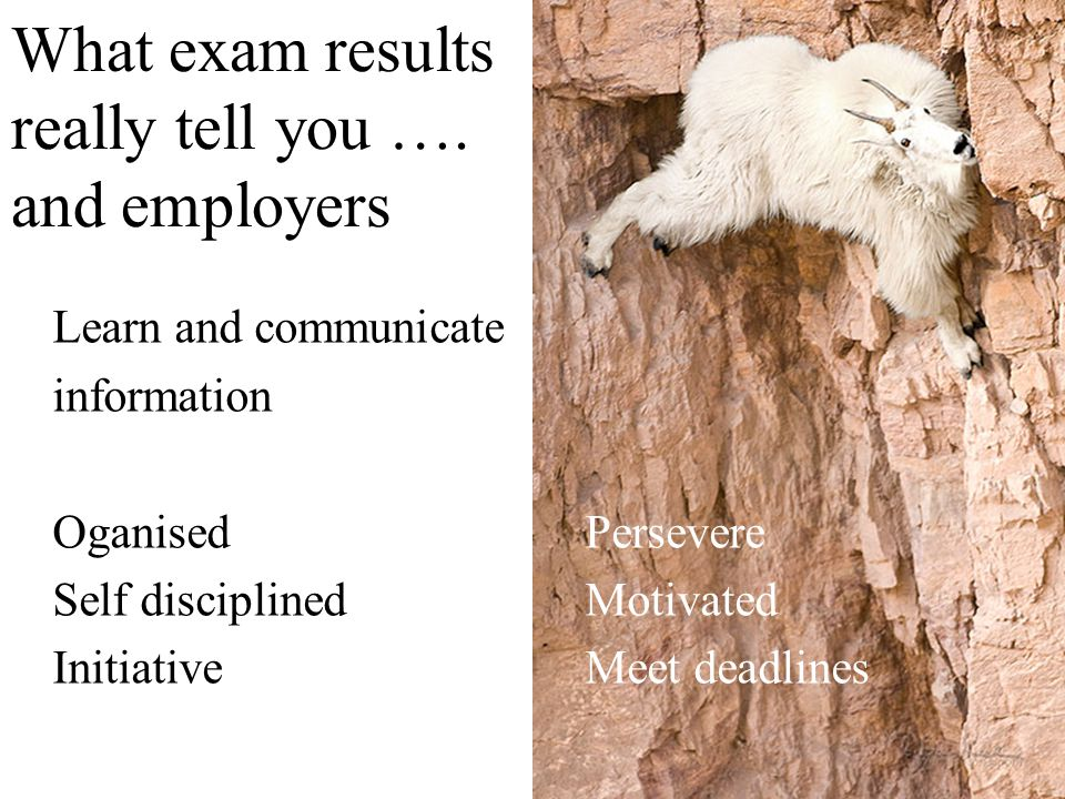 What exam results really tell you …. and employers Learn and communicate information OganisedPersevere Self disciplinedMotivated InitiativeMeet deadli