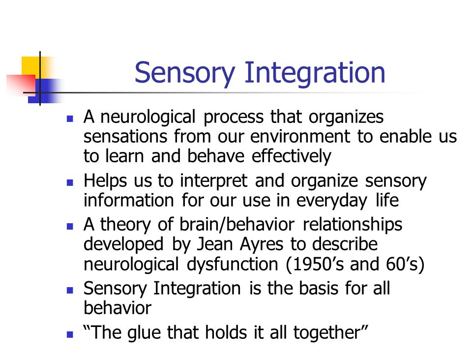 Sensory Integration A neurological process that organizes sensations from our environment to enable us to learn and behave effectively Helps us to interpret and organize sensory information for our use in everyday life A theory of brain/behavior relationships developed by Jean Ayres to describe neurological dysfunction (1950's and 60's) Sensory Integration is the basis for all behavior The glue that holds it all together