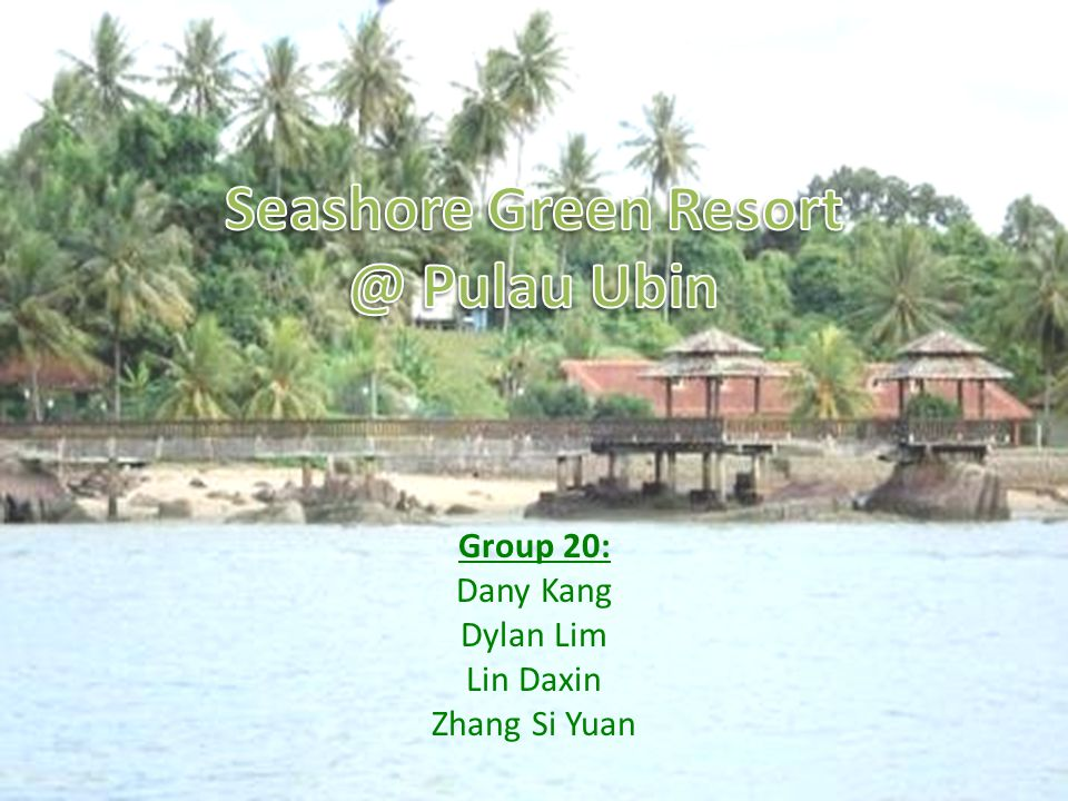 Group 20: Dany Kang Dylan Lim Lin Daxin Zhang Si Yuan