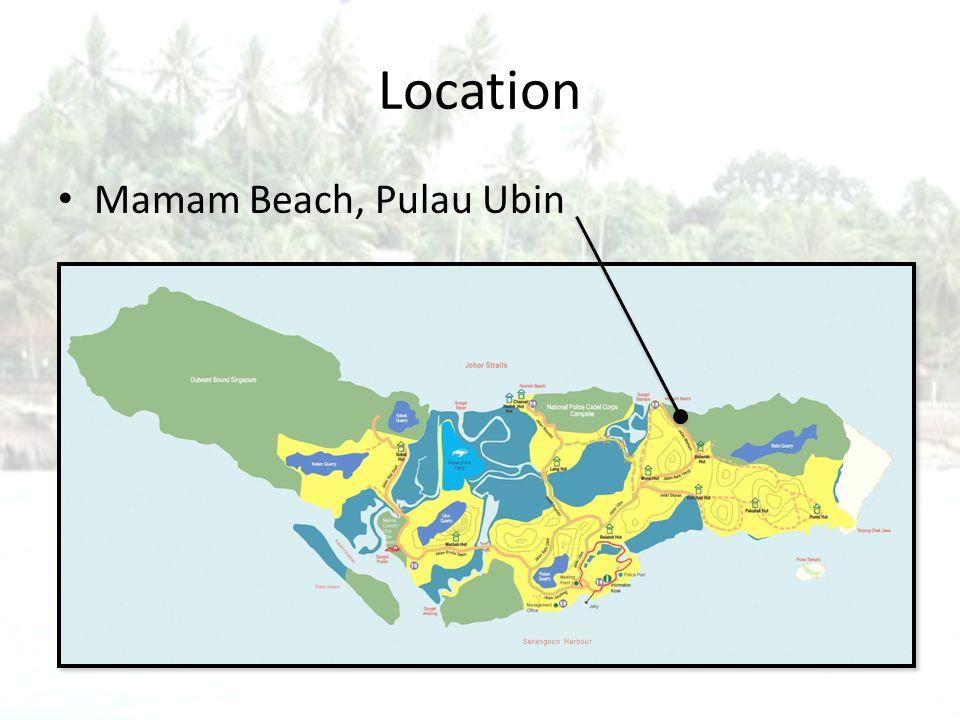 Location Mamam Beach, Pulau Ubin