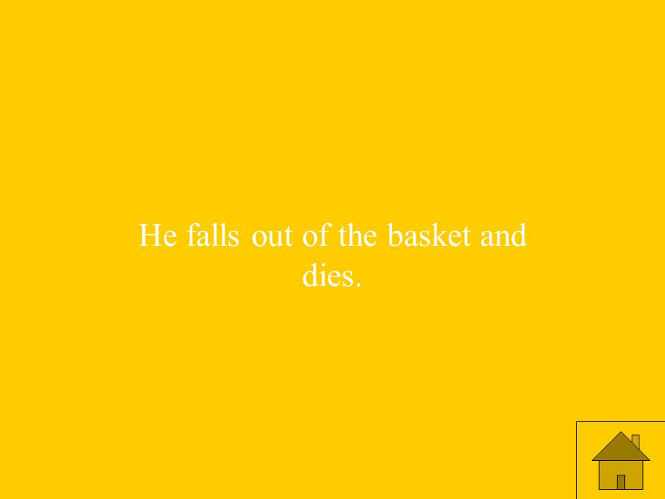 He falls out of the basket and dies.