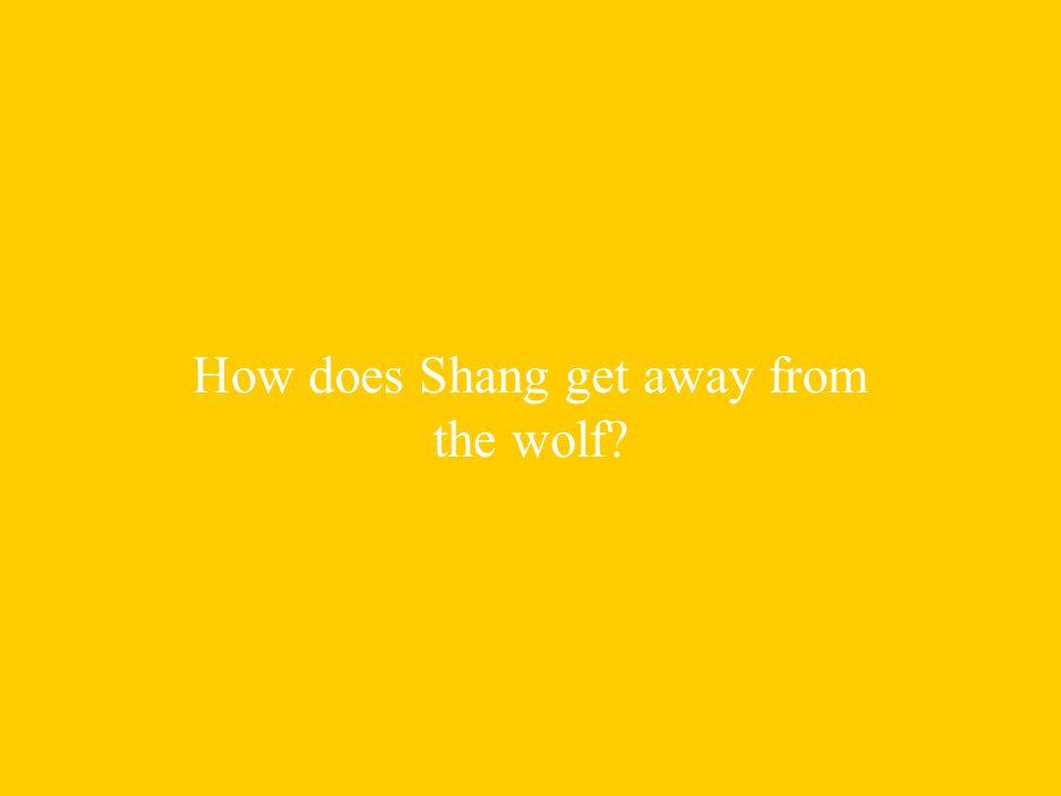 Shang