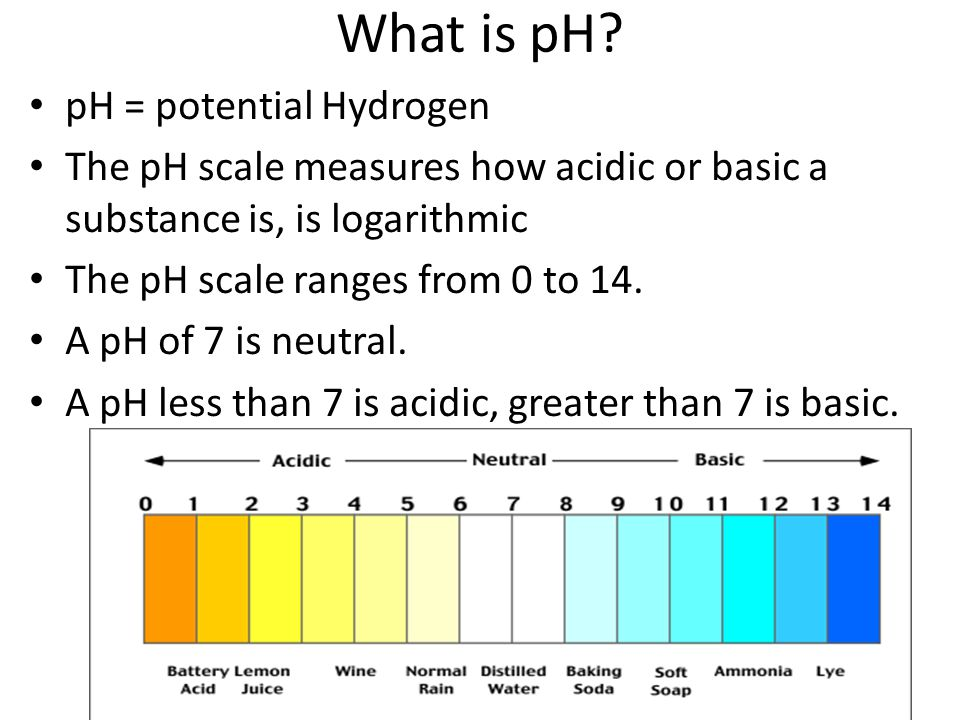 What is pH? pH = potential Hydrogen The pH scale measures how acidic or basic a substance is, is logarithmic The pH scale ranges from 0 to 14. A pH of