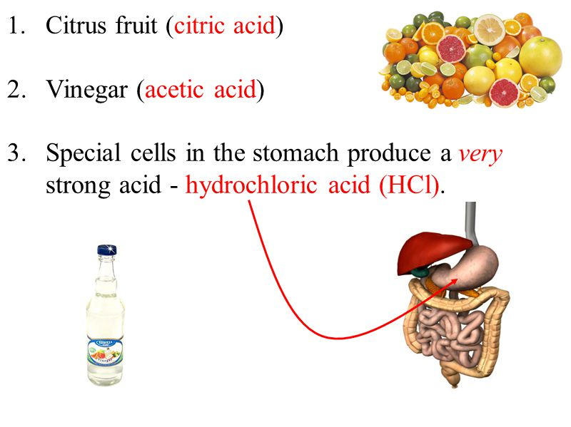 1.Citrus fruit (citric acid) 2.Vinegar (acetic acid) 3.Special cells in the stomach produce a very strong acid - hydrochloric acid (HCl).
