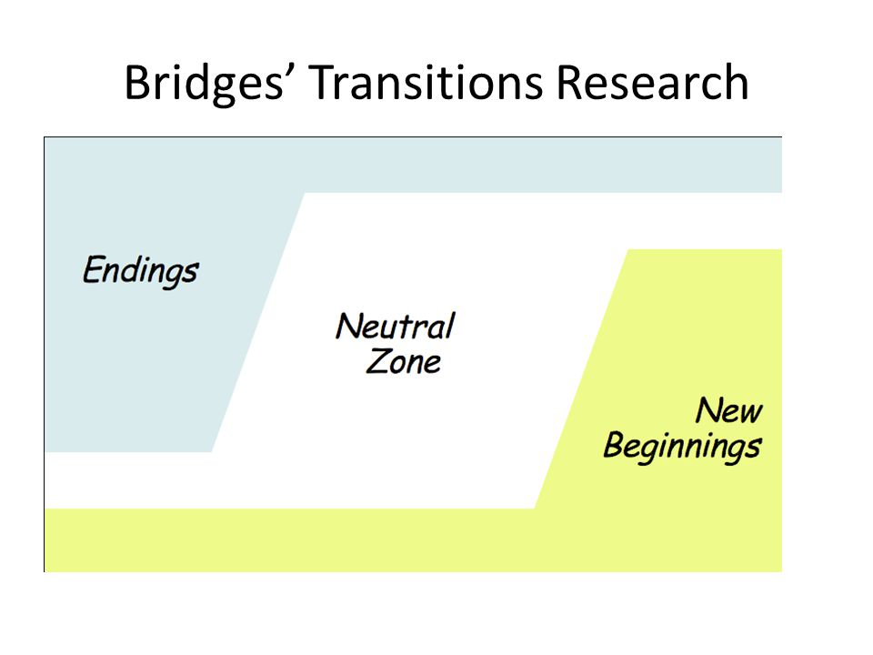 Bridges' Transitions Research