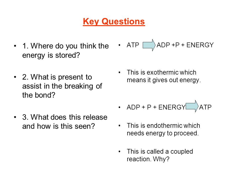 Key Questions 1. Where do you think the energy is stored? 2. What is present to assist in the breaking of the bond? 3. What does this release and how