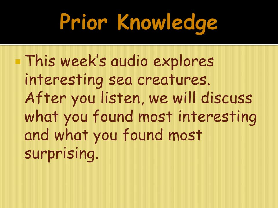 This week's audio explores interesting sea creatures. After you listen, we will discuss what you found most interesting and what you found most surp