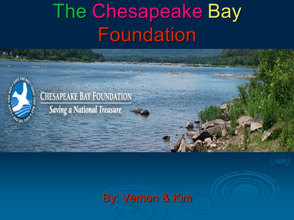 The Chesapeake Bay Foundation is supportive of the Clean up of the bay.