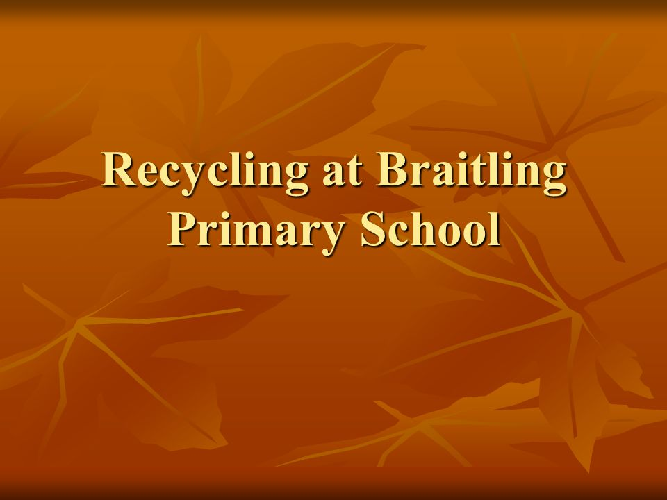 Recycling at Braitling Primary School