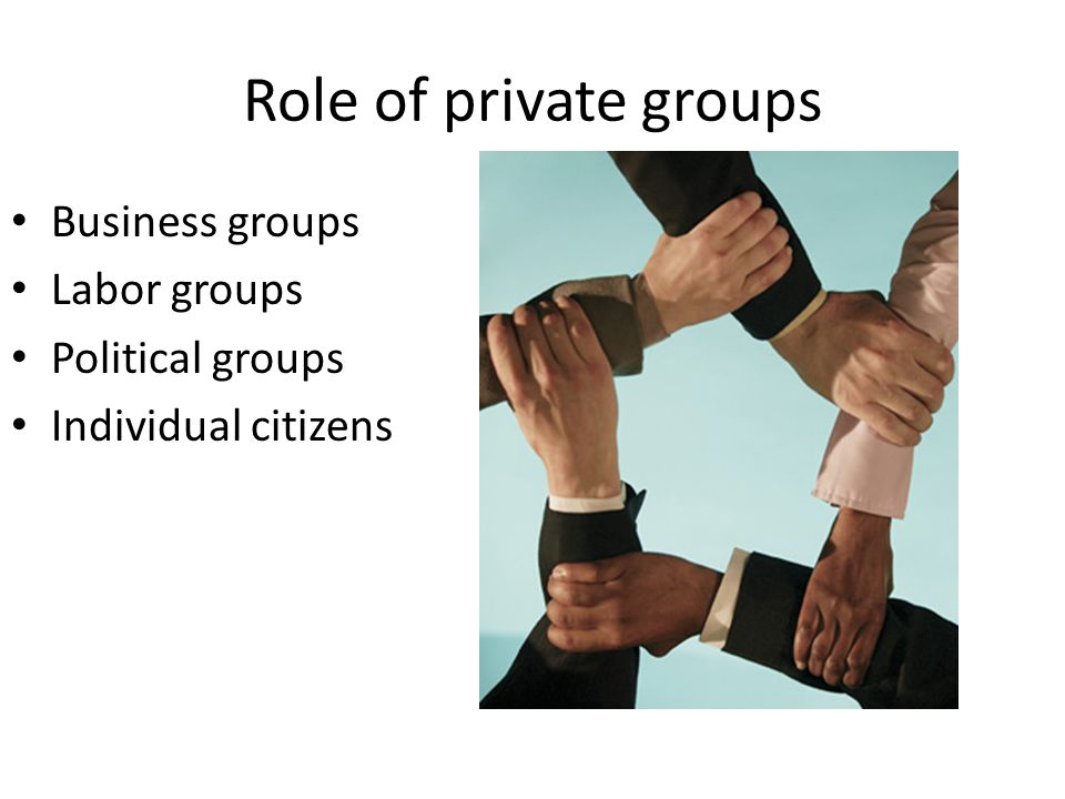 Role of private groups Business groups Labor groups Political groups Individual citizens