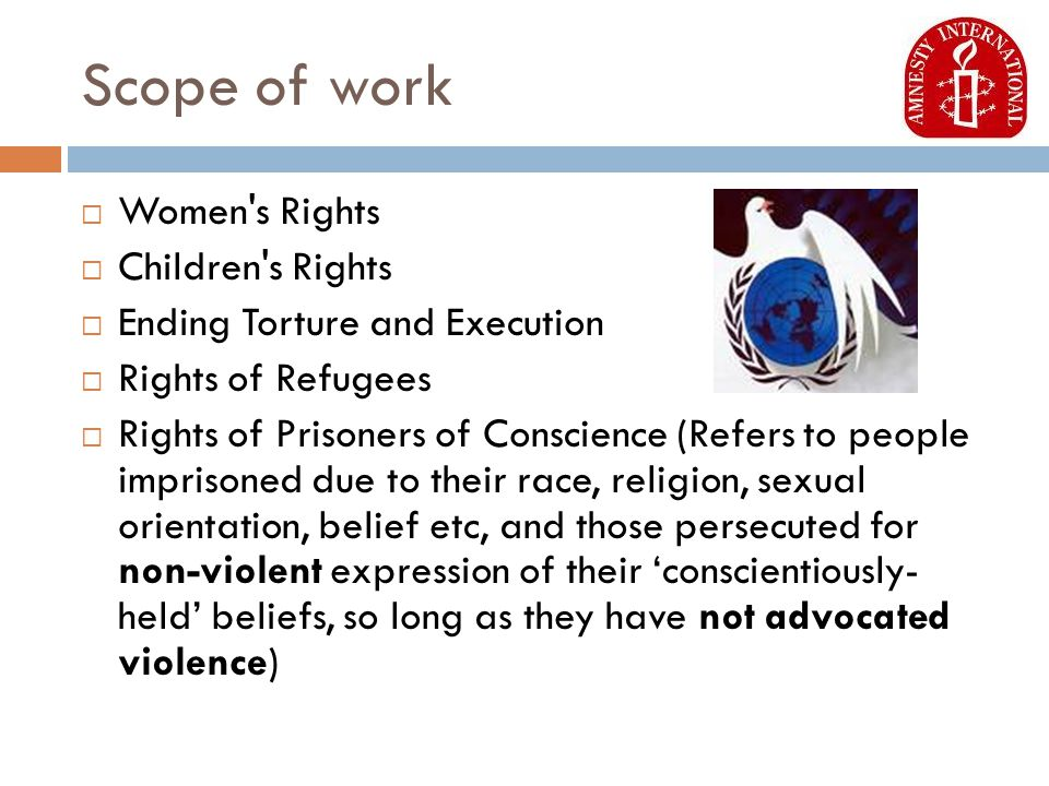 Scope of work  Women s Rights  Children s Rights  Ending Torture and Execution  Rights of Refugees  Rights of Prisoners of Conscience (Refers to people imprisoned due to their race, religion, sexual orientation, belief etc, and those persecuted for non-violent expression of their 'conscientiously- held' beliefs, so long as they have not advocated violence)